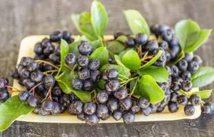 Черноплодная рябина: соки, отвары и настойки – помогают ли они от давления?