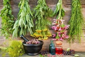 Алопеция: лечение народными средствами (10 рецептов)