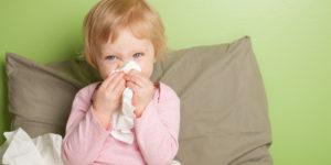 Лечение прополисом простудных заболеваний: эффективные методы