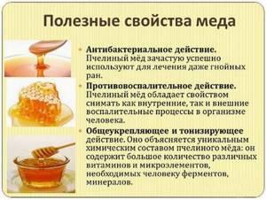 Редька с медом от кашля - лечебное действие и рецепты