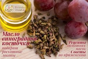 Масло виноградной косточки – залог вашего здоровья и красоты