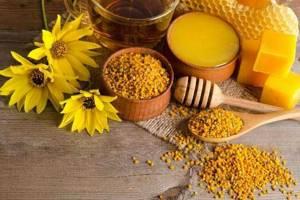 Пыльца пчелиная: применение при различных заболеваниях