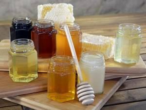 Лечение медом: рецепты на все случаи жизни