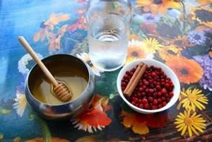 Брусника с медом: то, что нужно организму