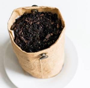 Ферментация мяты – подробная инструкция