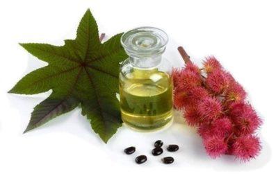 Касторовое масло: применение в косметологии, чем оно отличается от обычного и для чего его используют