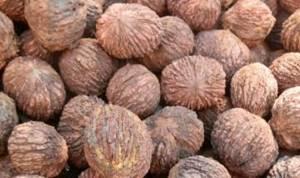 Масло черного ореха: полезные свойства и противопоказания, применение при лечении ЦНС и диабета