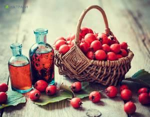 Настойка боярышника – крепкие нервы и здоровое сердце