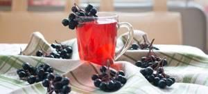 Черноплодная рябина с медом: рецепт и целебный эффект