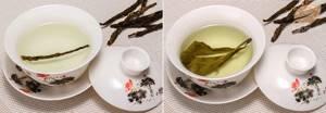 Кудин чай для домашней аптечки