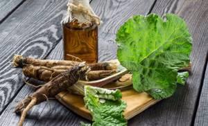 Как заготовить корень лопуха: когда собирать, где выкапывать и как сушить в домашних условиях для лечебных целей