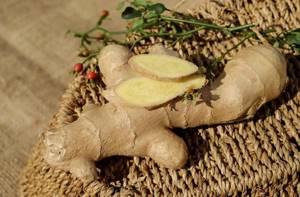 Лечебные свойства имбиря — все о пользе целебного корня