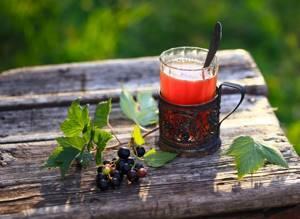 Чай из листьев смородины - польза и вред ароматного настоя