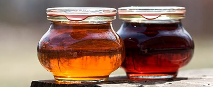 Кленовый сок: сбор, хранение, целебные свойства