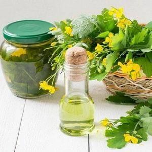 Настойка чистотела — полезные свойства и способ приготовления