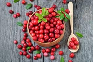 Морс из брусники – польза напитка и рецепты приготовления
