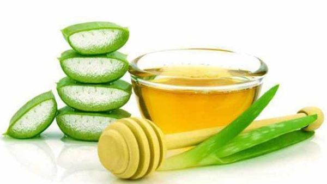 Алоэ с медом: полезные свойства и особенности применения