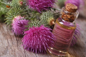 Репейное масло для бороды: как использовать для интенсивного роста волос, правила приготовления и нанесения
