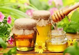 Как определить настоящий мед – методы пробы и признаки подделки