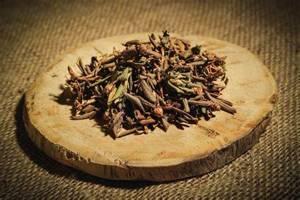Саган дайля: полезные свойства и рецепты