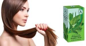 Подорожник для волос – 11 рецептов красоты