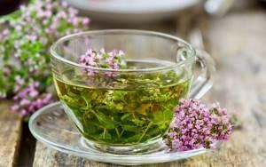 Чай с душицей: польза и вред, способ заваривания