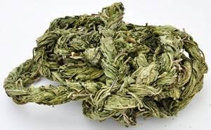 Конский щавель – неприметное растение с большим спектром целебных свойств