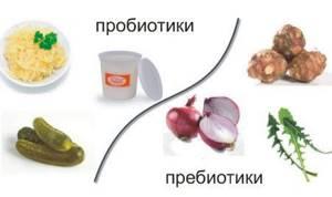 Пробиотики и пребиотики: отличия, польза и особенности применения