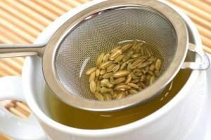 Фенхель — применение в медицине и кулинарии