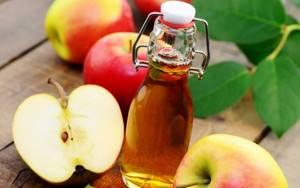 Яблочный уксус с медом – уникальный целительный тандем