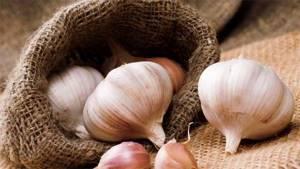 Чеснок для волос – эффективные маски домашнего приготовления