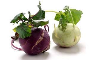 Кольраби – о невероятной пользе и возможном вреде капустной репы