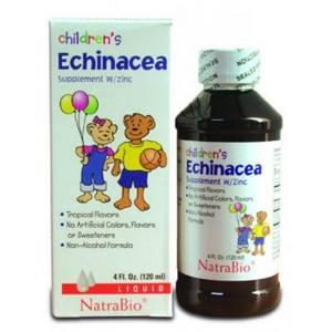 Эхинацея для детей: лечебные свойства и противопоказания, инструкция по применению и отзывы о средстве
