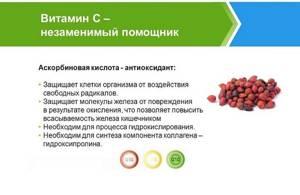 Отвар шиповника: польза и противопоказания укажут, как получить максимум витаминов
