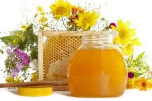 Почему забродил мед: причины и меры по спасению