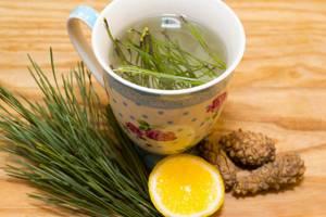 Отвар из еловых иголок – целебная сила природы на страже вашего здоровья