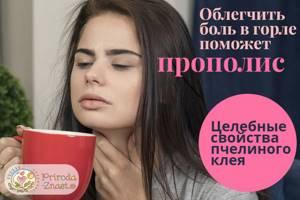 Лечение горла прополисом — рецепты настоек и правила применения