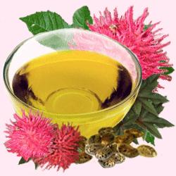 Касторка для очищения кишечника: как правильно принимать внутрь, чистка организма и печени с применением лимона