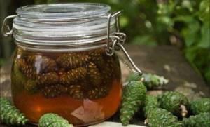 Настойка из сосновых шишек – отличное проверенное средство для здоровья для сердца и сосудов