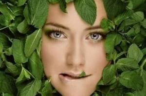 Чем полезна мята для женщин - применение в косметологии и медицине