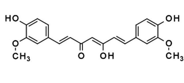 Куркумин (e100) – полезная пищевая добавка с лечебными свойствами