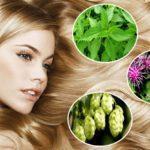 Настойка арники сохранит молодость кожи и укрепит волосы