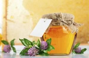 Клеверный мёд – волшебный эликсир здоровья и красоты
