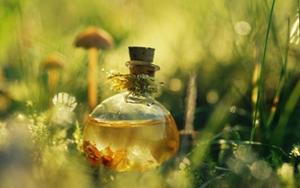 Цветочный мед – непревзойденный природный целитель