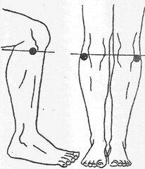 Точка долголетия: делаем исцеляющий массаж