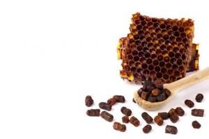 Перга пчелиная: противопоказания или когда нельзя применять пчелиный хлеб