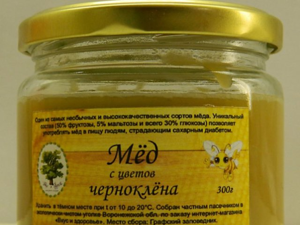 Чернокленовый мед: полезные свойства и уникальный состав