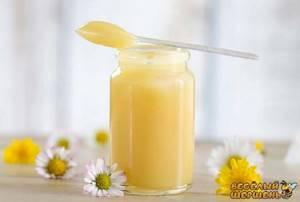 Применение маточного молочка: целебные рецепты