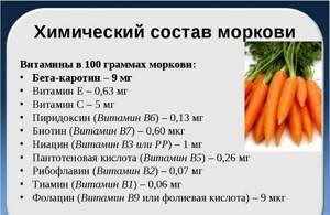 Где содержится каротин: список продуктов, какой из корнеплодов содержит его больше всего – тыква или морковь