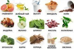 Пребиотики: источники и список препаратов